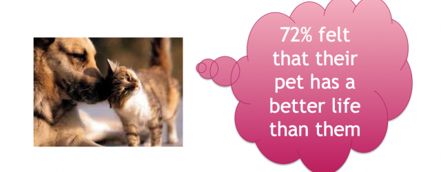MG&A veterinary market research - who has a better life, you or your pet?