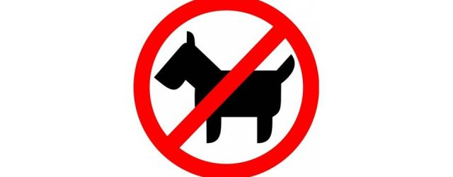 MG&A Veterinary market research: Do you think dogs should be banned from public spaces?