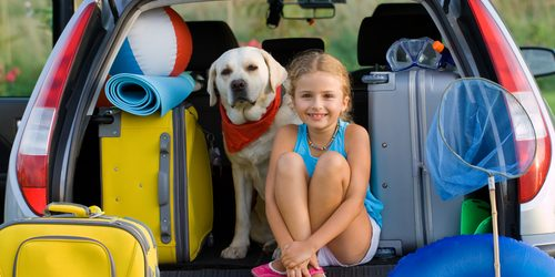 MG&A Veterinary Market Research: Do you own one of the 160,000+ pets that have travelled from UK?